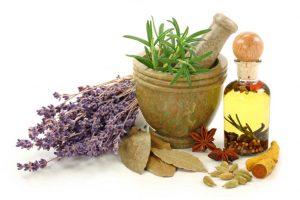 plantasmedicinales